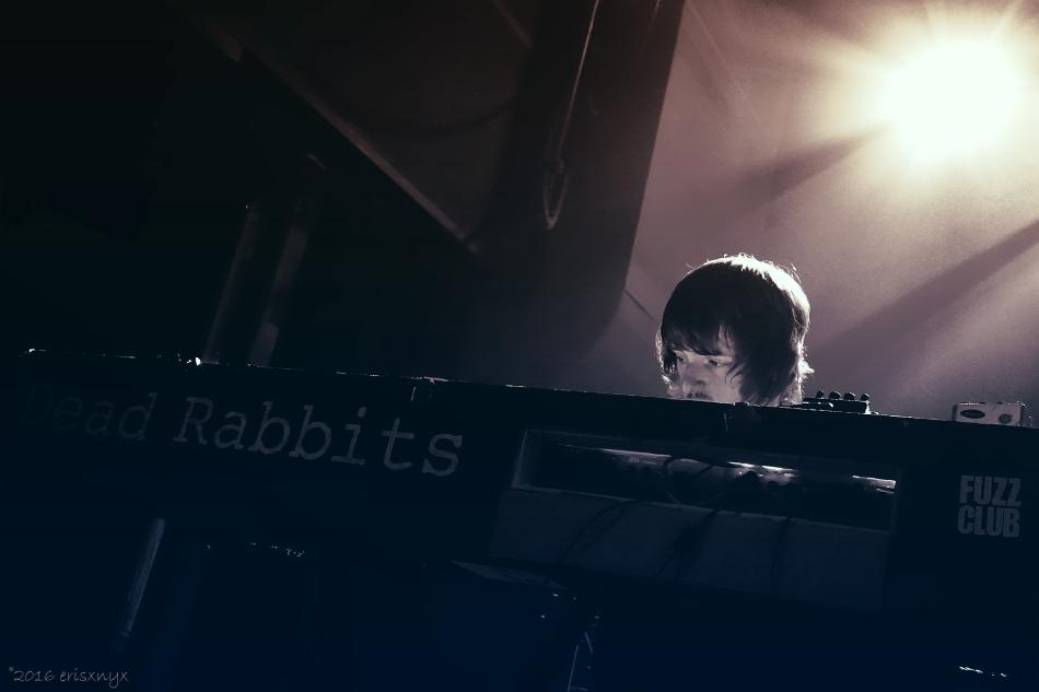 dsc04967-dead-rabbits